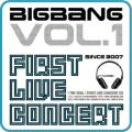 Forever with You (feat. Park Bom Lee) - Big Bang