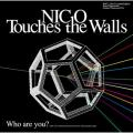 image training - NICO Touches The Walls