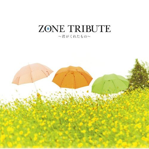 Album ZONE tribute~Kimi ga kureta mono~ by Nagi Yanagi