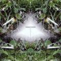 Symmetry / Kowaremono