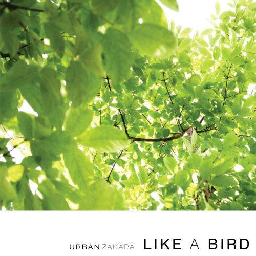 Like A Bird by Urban Zakapa