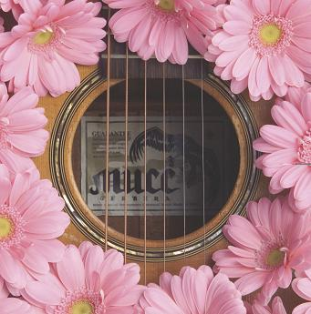Single Gerbera by MUCC