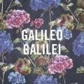 Arashi no ato de ( 嵐のあとで ) - Galileo Galilei