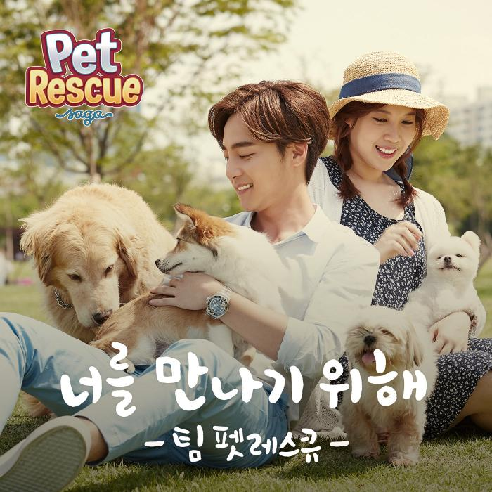 Single Pet Rescue by Roy Kim