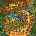 A Beautiful Song - Ken Yokoyama