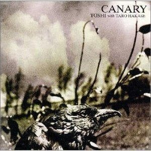 Album Canary by Toshi