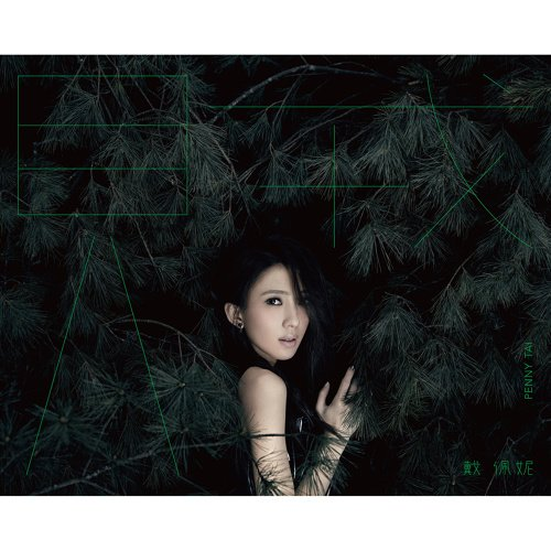 Album Thief by Penny Tai