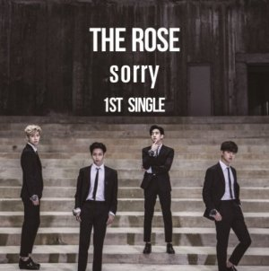 Sorry by The Rose