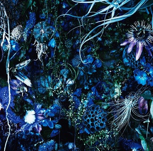 Album Oneness M by SUGIZO