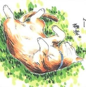 catgirl3344