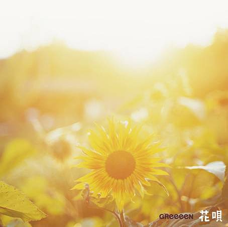 [Jpop] GReeeeN Releases