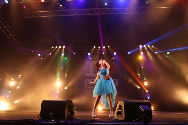 AFAID 2014 Wraps Up Star-Studded Festival