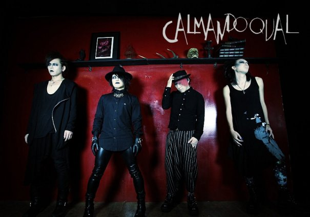 Calmando Qual will Disband