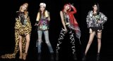 Korean Netizens Critical Of 2NE1's Comeback