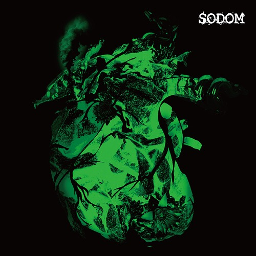 Single SODOM by Codomo Dragon