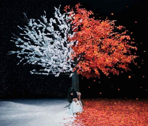 Single 茜さす(Akane Sasu)/everlasting snow by Aimer