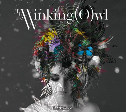 Album BLOOMING by The Winking Owl