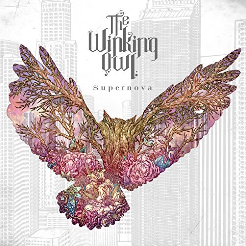 Album Supernova by The Winking Owl