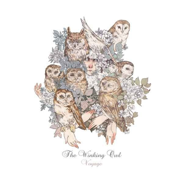 Album Voyage by The Winking Owl