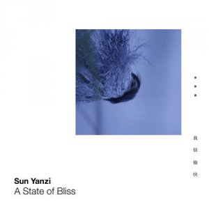A State Of Bliss  by