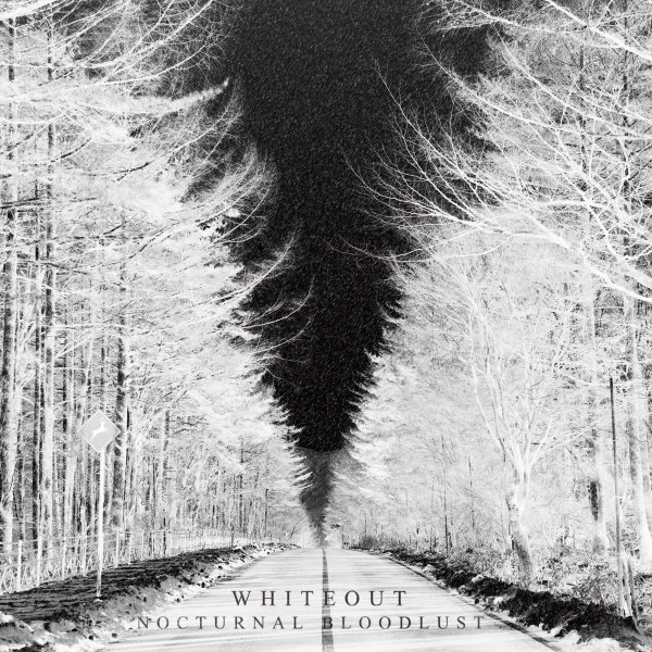 Mini album WHITEOUT by NOCTURNAL BLOODLUST