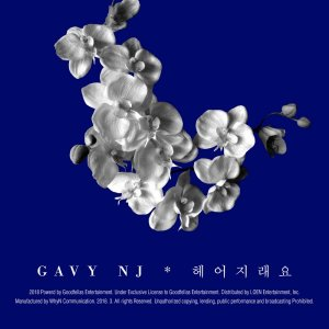 Break Up (헤어지래요) by GAVY NJ