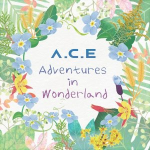 Take Me Higher by A.C.E (band)