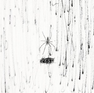PEST by Codomo Dragon